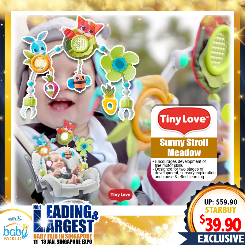 TinyLove Sunny Stroll Meadow Toy