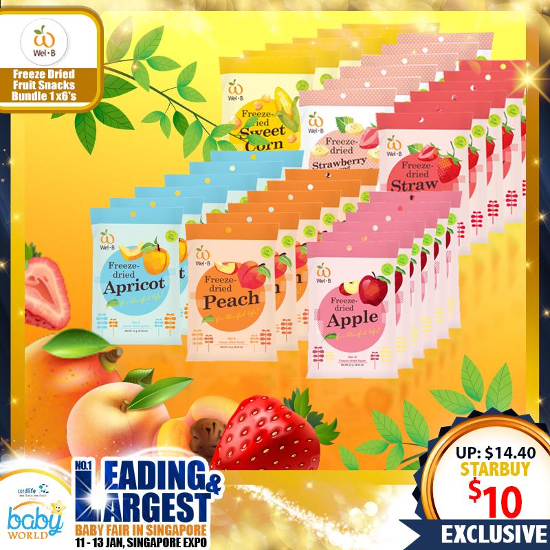 Wel-B Baby Freeze Dried Snack! Bundle of 6 packs